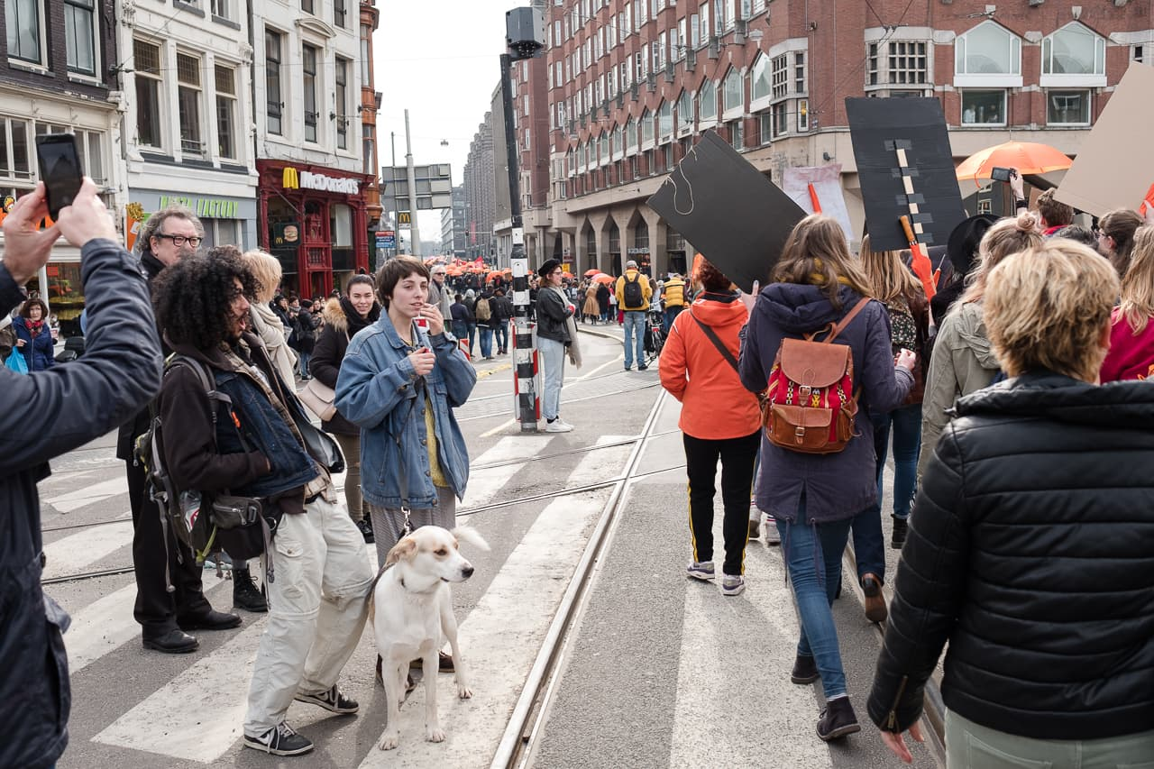 The protest group moving through Amsterdam's streets, with a man with a dog joining in in the chants
