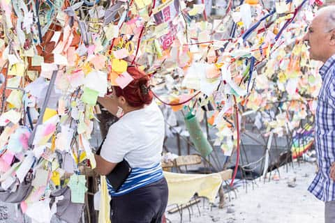 A woman adding a note to a wishing tree